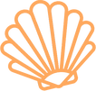 shell_icon_125569.png