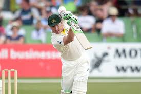Professional cricket set