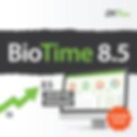 Biotime 8.5 Time Attendance System Softw