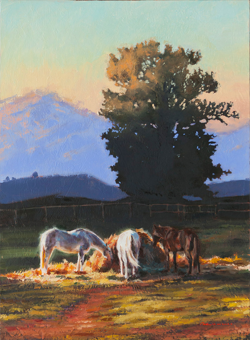 THREE HORSES IN THE EVENING SUN. 73x54