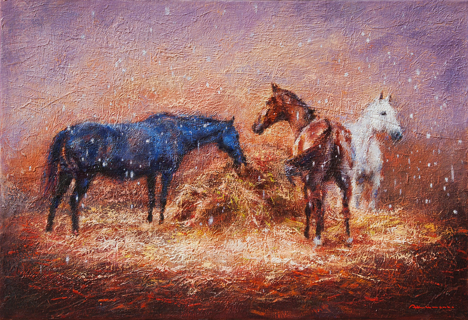POLO. THREE HORSES UNDER THE FIRST SNOW.