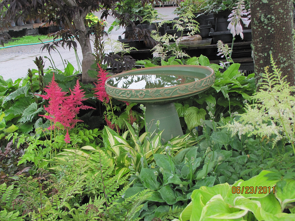 mead u0027s nursery u0026 garden center greenhouses queensbury ny