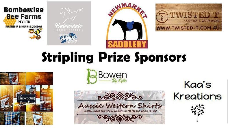 Stripling Prize Sponsors.jpg