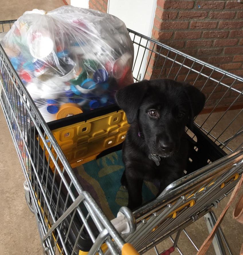 (S)pup Hansje spaart plastic doppen