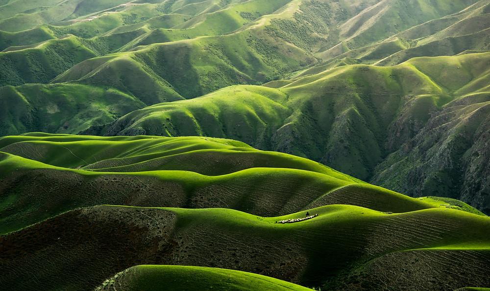 Body Grassland in Yili, Xinjiang, China