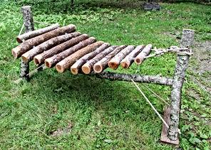 Raw Log Amadinda.JPG