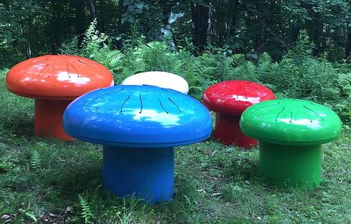 Fungiphone herd.jpg