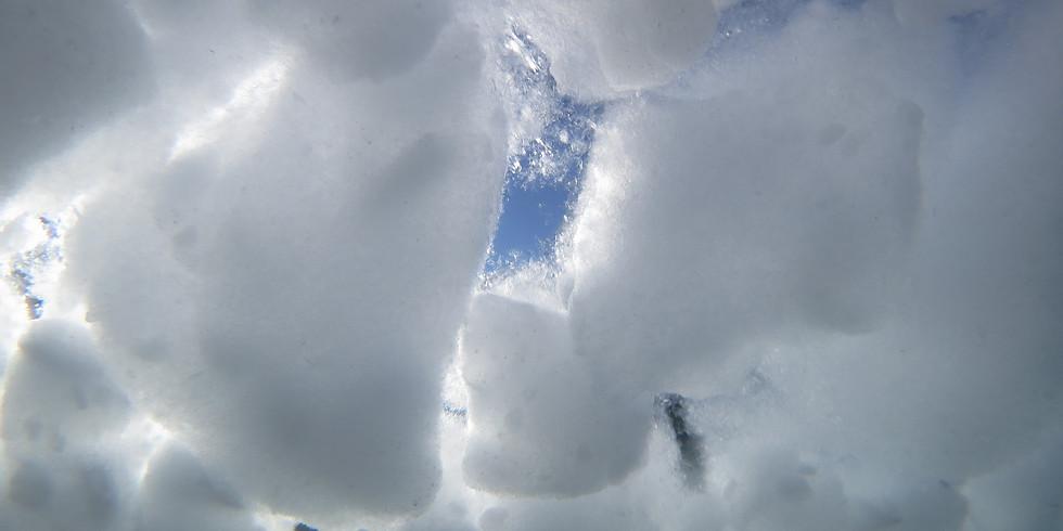 北海道・知床・流氷ダイビング