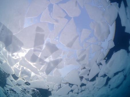 世界自然遺産を潜る、ダイバーしかできない、流氷の下へダイビング【北海道、知床流氷ダイビングツアー】2/21-24