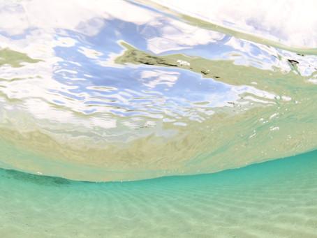 世界一大好きな海、与論島へ【雨だけど楽しい少人数、与論島ダイビングツアー】6/20-24