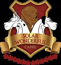 Canil Solar Wonderful