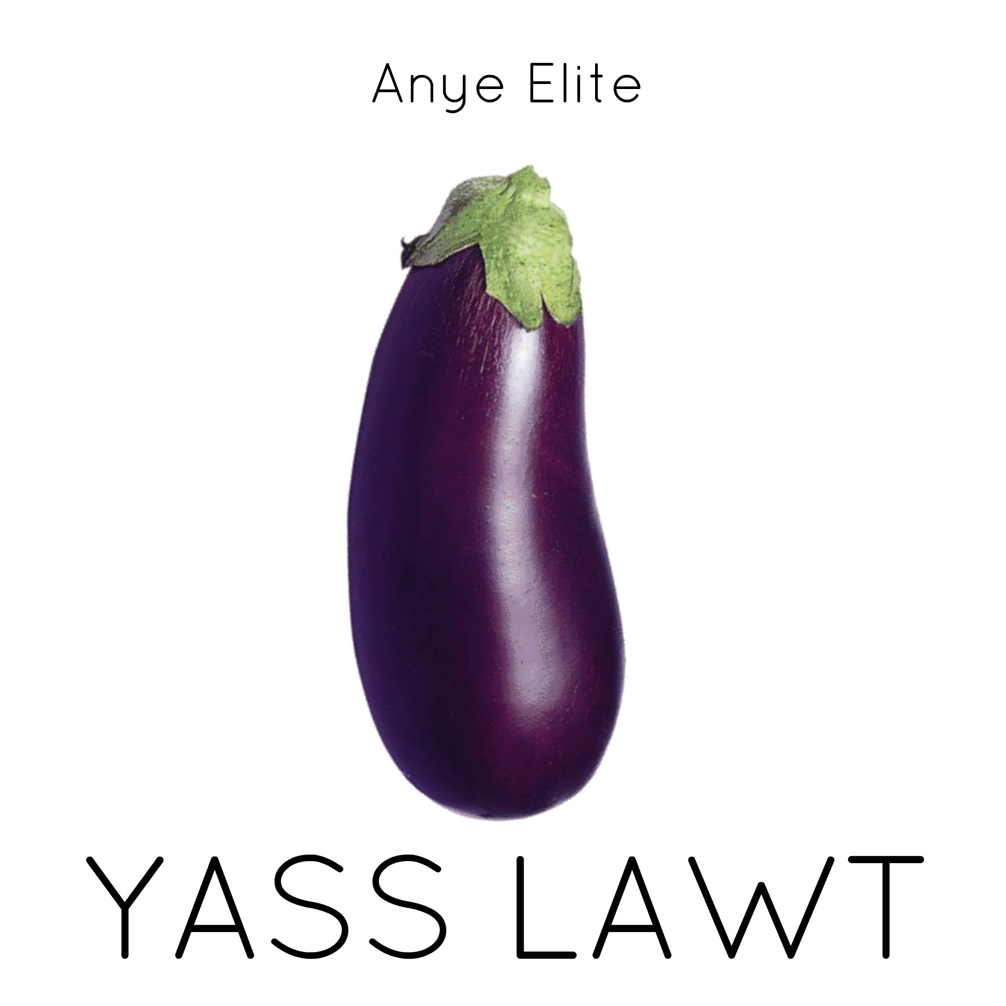 Yass Lawt