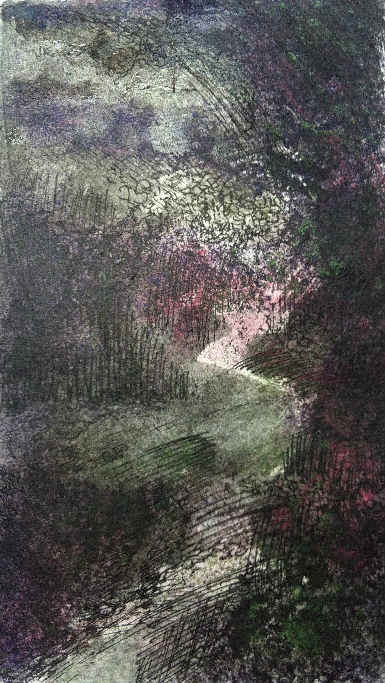 Bospad 1 | inkt op papier | 10x16