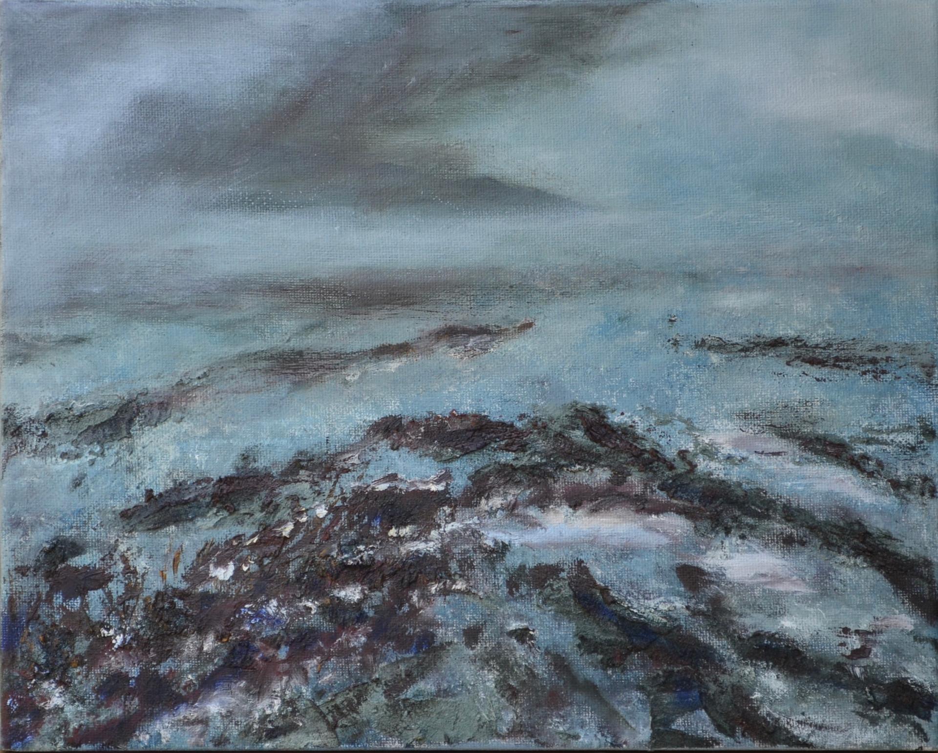 Klaai 1 | acryl op doek | 30x24