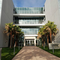 USF SP College of Business