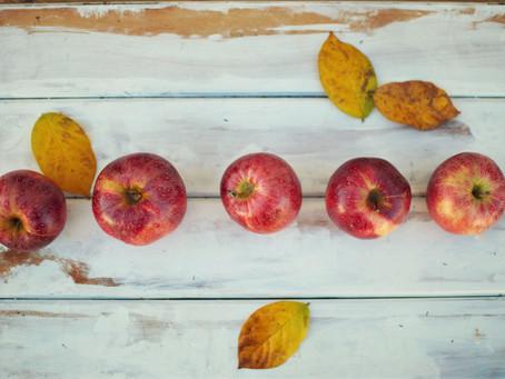 Seasonal Foods for Autumn