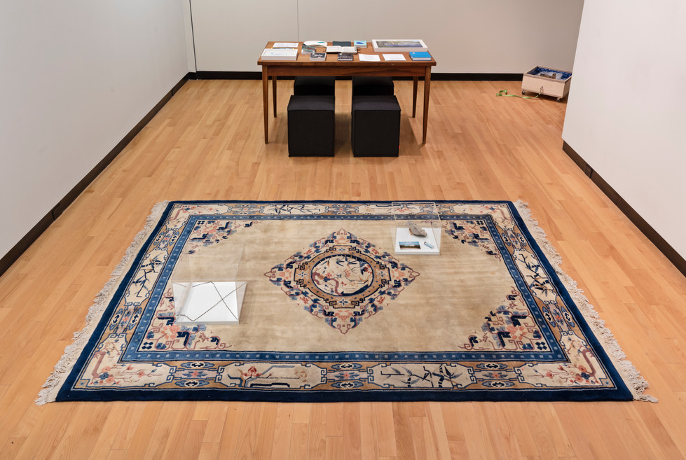 Installation view, Learning from the Lake, the Art Museum, June - July 2018. Photo: Toni Hafkenscheid