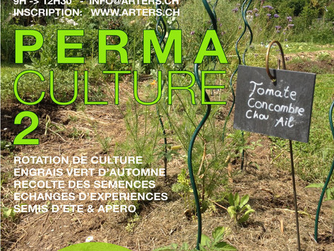 Formation en permaculture 2