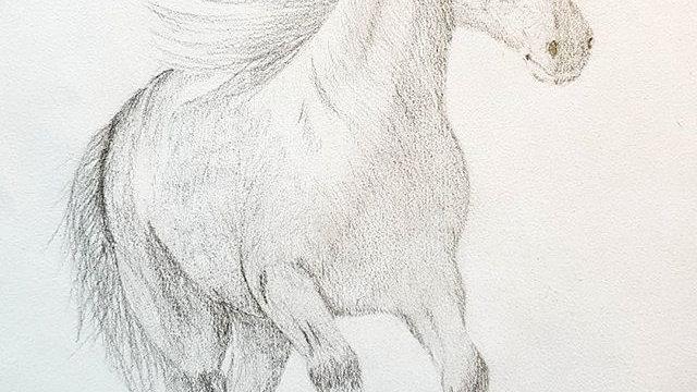 A4 Custom Graphite Pencil Portrait
