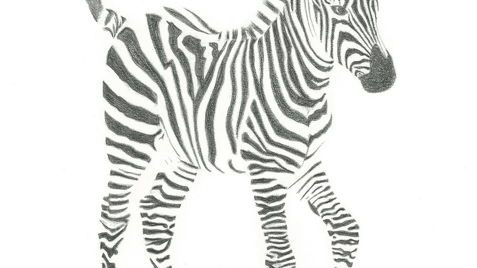 Stripes - South Africa Greetings Card Series