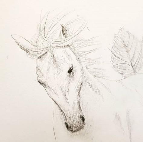 Elegant horse... I love the feeling of m