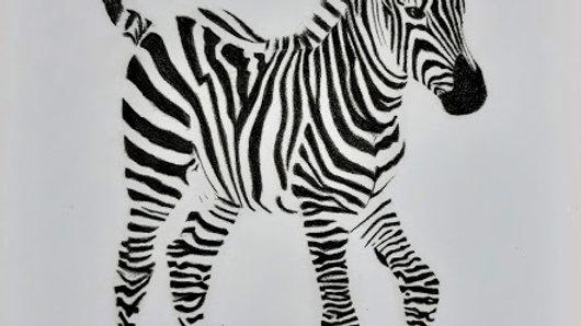 A3 Zebra Print