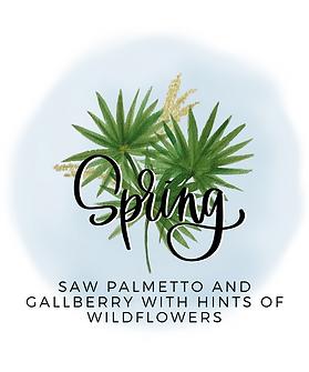 Spring website.png