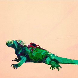 World Georgraphy Magazine: Galapagos Iguana