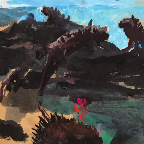 Iguanas lounging