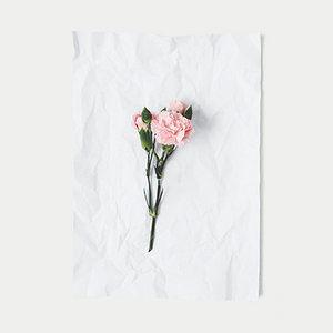 boutique+de+flores,+decoração+de+eventos