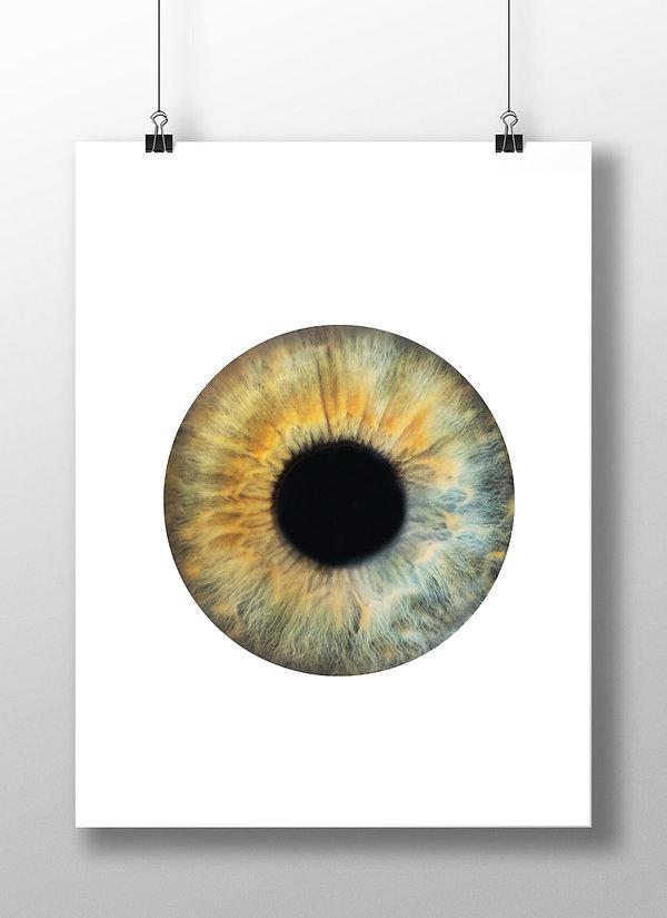 fine_art_print_2.jpg