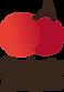 QG-Logo-Cores.png