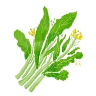 『野菜はくすり』(ORANGE PAGE BOOKS)