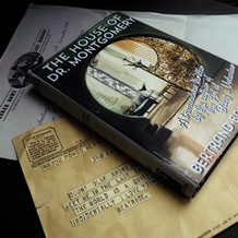 Snicket Files - Physical Graphics