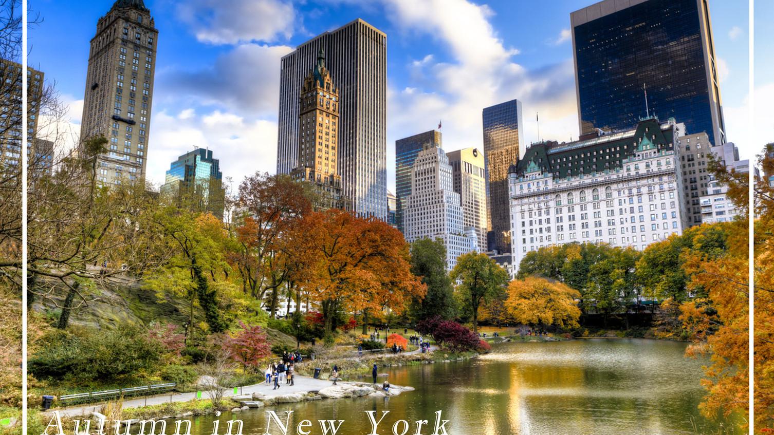Postcard New York.jpg