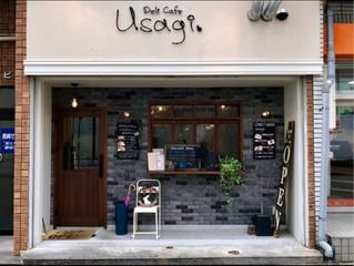 長崎市千歳町デリ・カフェ・うさぎ|長崎情報共有イエポス