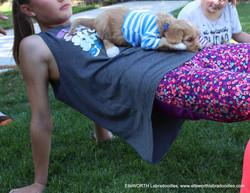 he liked yoga
