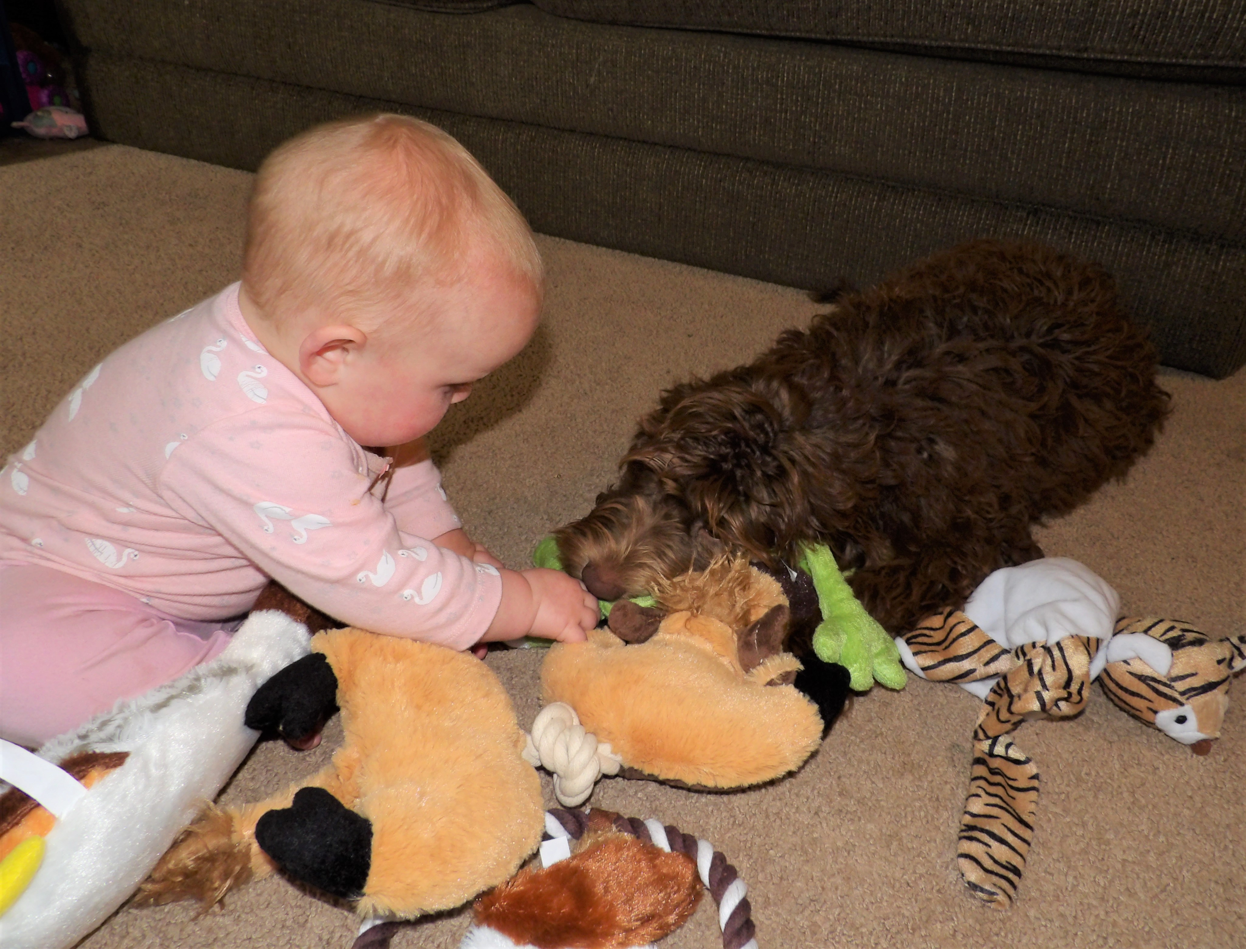 Gently sharing with baby