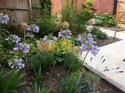 Guildford garden