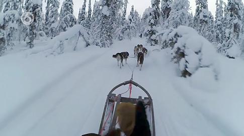 Camerawerk Arctic Challenge 2, klik voor de video