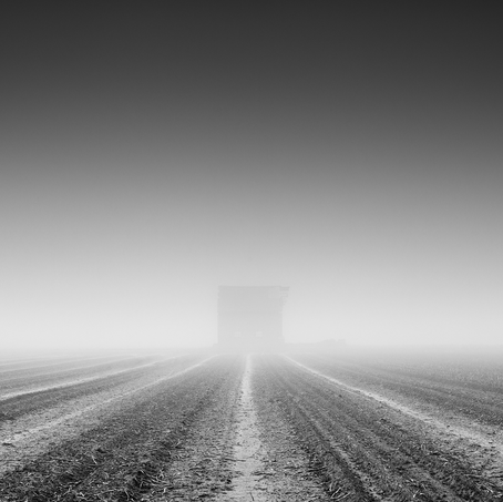 Barn in the Mist, Zeeuws-Vlaanderen, Netherlands, 2020