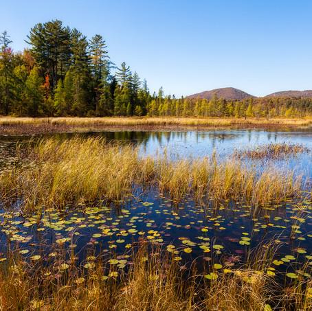 Lake, Adirondacks, USA