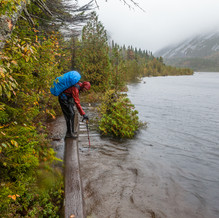 Flowed Land, High Peaks, Adirondacks, USA