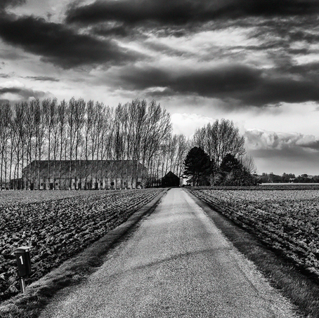 Farm and Fields, Zeeuws-Vlaanderen, The Netherlands
