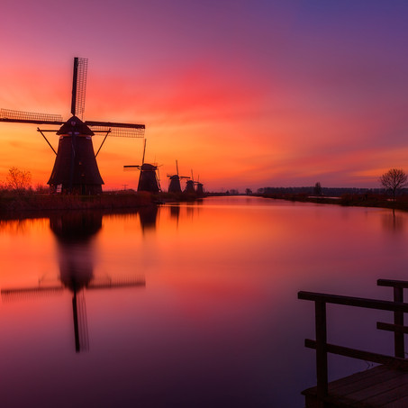 Morning Reds, Kinderdijk, Zuid-Holland, The Netherlands