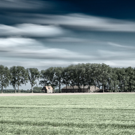 Farm with Trees, Zeeuws-Vlaanderen, Netherlands, 2020