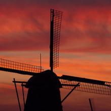 Red Wicks, Kinderdijk, Zuid-Holland, The Netherlands