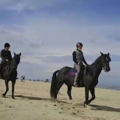Paardrijden in Zeeland, strandrit