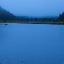 Flowed Land Twilight, High Peaks Wilderness, Adirondacks, USA