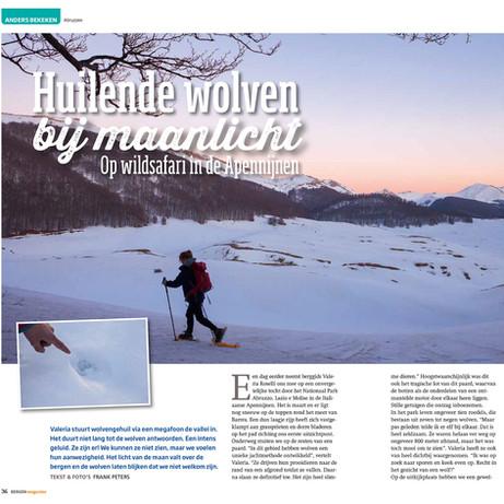 Huilende wolven bij Maanlicht, Bergen Magazine